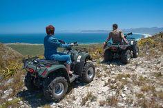 3 unmissable spring activities in Gansbaai Quad Bike, Spring Activities, Mountain Range, Habitats, Westerns, Monster Trucks, Explore, Outdoor, Atelier