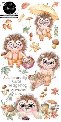 Hedgehog Illustration, Cute Illustration, Watercolor Illustration, Digital Illustration, Clipart, Animal Drawings, Cute Drawings, Art Clip, Wallpaper Kawaii