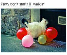 Till I walk in!
