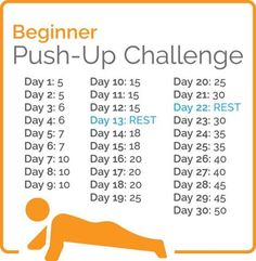 beginner push up challenge