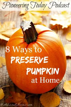 Fabulous ways to preserve pumpkin at home to use all year long. Super important to know which are true safe ways to can pumpkin. If you're a true pumpkin fan, you'll want to snag this now to put up your pumpkin while it's in season for year round use. Canned Pumpkin, A Pumpkin, Pumpkin Recipes, Fall Recipes, Canning Pumpkin Puree, Freezing Pumpkin, Preserving Pumpkins, Preserving Food, How To Preserve Pumpkins