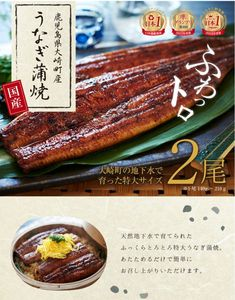 Food Design, Web Design, Menu Flyer, Package Design, Vegetables, Poster, Design Web, Packaging Design, Vegetable Recipes