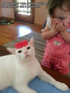 Little girl is tickled she made her cat a princess