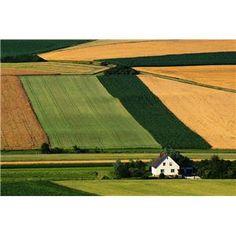 The beautiful American farm