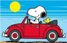 NEW LARGER SIZE ! Snoopy and Woodstock on the street of their VW … Fridge Magnet All of us grew up with Charlie Brown and The Peanuts Gang! These magnets are a beautiful little reward and can be positioned inside playing cards or letters. Peanuts Gang, Peanuts Cartoon, Charlie Brown And Snoopy, Snoopy Cartoon, Images Snoopy, Snoopy Pictures, Volkswagen, Peanuts Characters, Cartoon Characters