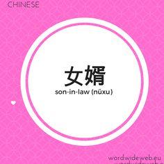 女婿 (son-in-law) Word Wide Web, Learn Mandarin, Son In Law, Learning, Words, Studying, Teaching, Horse, Onderwijs
