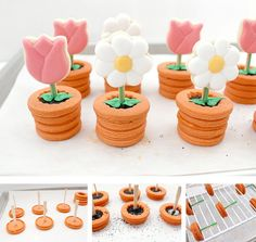 galletas maceta con flor