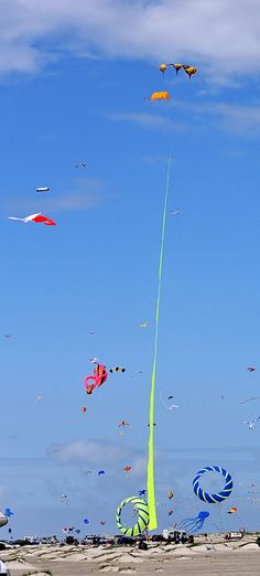 """The Wind Whispers...""""Kites rise highest against the wind - not with it.""""  Winston Churchill"""
