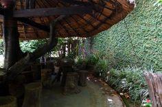 Eva Cafe Evacoffee kontum kon tum vietnam travel highlands