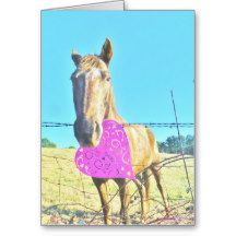 Horse Valentine  Pink and  turquoise Cards