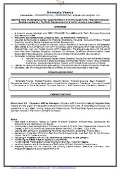 professional curriculum vitae resume template for all job seekers sample template of an excellent b