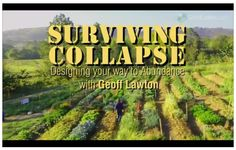 Surviving Collapse: Designing your way to Abundance. Geoff Lawton explains how he discovered Permaculture and how it enabled him to become more productive in creating abundance. Permaculture Principles, Permaculture Design, Survival Tips, Survival Skills, Geoff Lawton, Peak Oil, Farm Gardens, Green Garden, Aquaponics