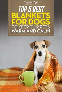 Top 5 Best Dog Blankets for Sleep & Warmth. Don't you love the feeling of snuggling up under a warm blanket when you're cold? Your dog enjoys that feeling too! Most pet owners just give their pet any old blanket that they have lying around, but investing in one of the best dog blankets will make your pooch much happier. #dogs #dogblankets #blankets #pets #home #dogsupplies