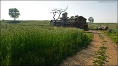 Scenery of the Rye field in Anseong, Korea by Bang, Chulrin /Architect Group CAAN