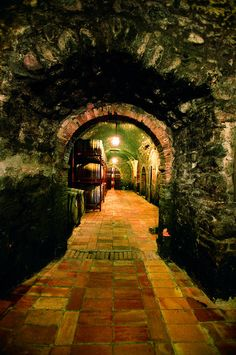 Wine Cellar - Tuscany, Italy - now there's a door that really beckons me!  :)