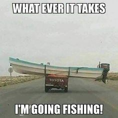 All except Toyota, I could get it. Should have been a clue. LoL just saying I rather not settle, iid rather not settle but first class. 0 materialistic to me lol Funny Fishing Pictures, Funny Fishing Memes, Fishing Quotes, Funny Pictures, Hunting Quotes, Hunting Signs, Crazy Pictures, Funny Pics, Beautiful Pictures