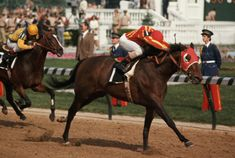 Cannonade-the 1974 Kentucky Derby winner