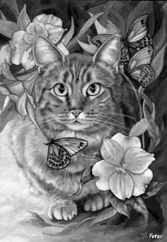 Coloring for adults - Kleuren voor volwassenen Cat Coloring Page, Colouring Pics, Animal Coloring Pages, Adult Coloring Pages, Coloring Books, Cat Colors, Cat Drawing, Colorful Pictures, Animal Drawings