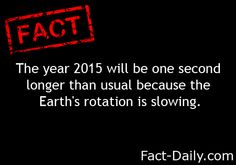 Fact Daily