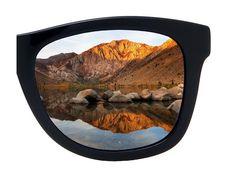 Chat Cheap Sunglasses, Mirrored Sunglasses, Cat Breeds