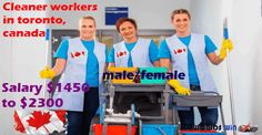 Cleaner workers need urgently in toronto, canada  Location:  Toronto, ON  of openings:  100  Salary $1450 to $2300   Description  Impark ...