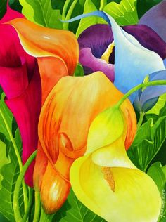 Calla Lily Rainbow Painting by Janis Grau - Calla Lily Rainbow Fine Art Prints and Posters for Sale Lys Calla, Calla Lillies, Calla Lily, Rainbow Painting, Rainbow Art, Rainbow Colors, Lily Painting, Vibrant Colors, Rainbow Flowers