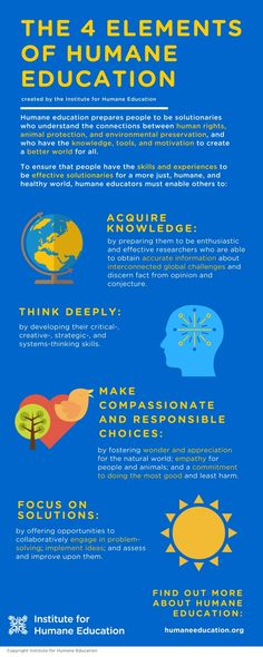 Infographic of the 4 Elements of Humane Education