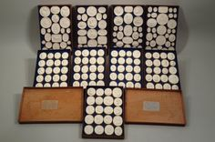 Huge Group of 19th c. Classical Plaster Intaglios : Lot 617