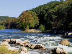 Guadalupe River, Texas.... How lame I've lived here my whole life and have never floated the river