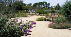 University of California Riverside Botanic Gardens