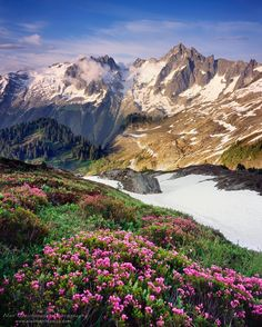 Eldorado Peak, North Cascades National Park by Alan Majchrowicz  on 500px