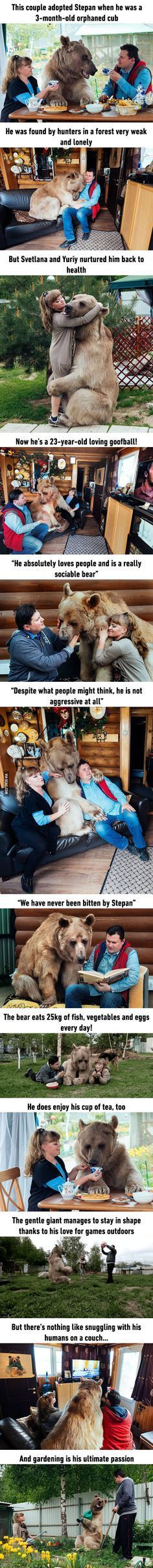 Russian Couple Adopted An Orphaned Bear 23 Years Ago, And They Are Still Living Happily Together 9gag.com/