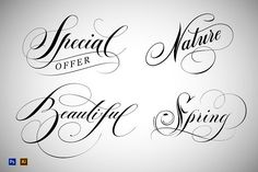 Hand Lettered Words. by vatesdesign on @creativemarket