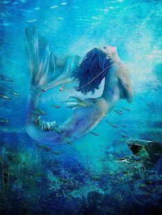 Mermaids Don't Exist, NOAA Website Notes