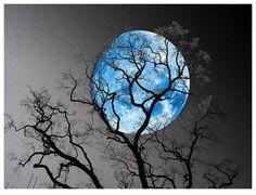 Gypsy Magic: The Blue Moon