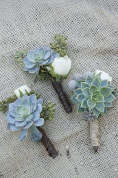 Image result for succulent boutineer ideas