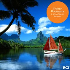 Sail away to the tantalizing turquoise blue lagoons of exotic Opunohu Bay, French Polynesia.