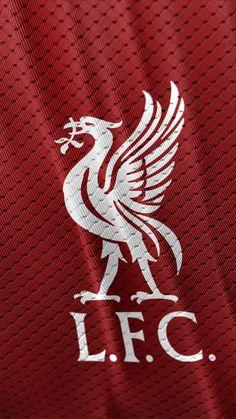 Liverpool Images, Liverpool Logo, Liverpool Anfield, Salah Liverpool, Liverpool Players, Liverpool Football Club, Iphone Wallpaper Liverpool, Lfc Wallpaper, Liverpool Wallpapers