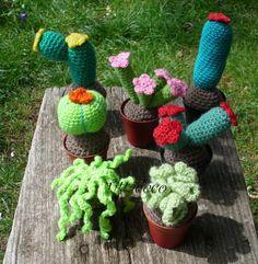 Cactus amigurumi, by Tittadeco Shop, 8,00 € su misshobby.com