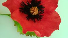 poppies made from sugar for cakes.  tania@cakearts.co.za