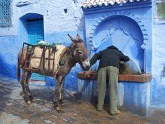 marruecos | Tumblr