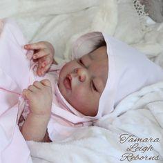 Erin Adrie Stoete Reborn Baby Girl Fake Baby Doll Tamara Auty Tamara Leigh Reborns