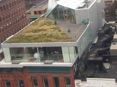Green roof living