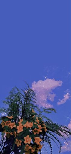 Scenery, Clouds, Anime, Wallpapers, Outdoor, Outdoors, Landscape, Wallpaper, Anime Shows