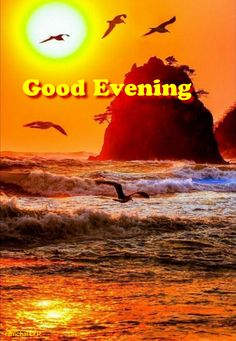 Good Evening Greetings, Evening Quotes, Good Night Quotes, Good Morning Images, Poster, Dusk, Dolphins, Thinking About You, Good Morning Picture