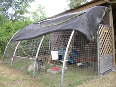 pictures of recycled trampolines | Chicken yard made from a recycled trampoline frame, coop made from 55 ...