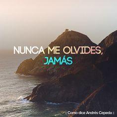 Este mensaje fue compartido vía Andrés Cepeda Self Love, Letting Go, Decir No, Poetry, Advice, Let It Be, My Love, Words, Instagram