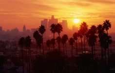 Los Angeles Wallpaper Sunset