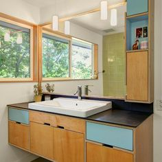 Birch Plywood Cabinetry Design Ideas, Pictures, Remodel and Decor