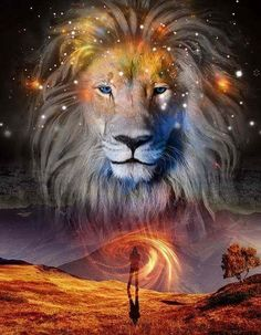 Lion Family Tattoo Best Lion Tattoos For Men: Cool Lion Tattoo Designs And . - Lion Family Tattoo Best Lion Tattoos for Men: Cool Lion Tattoo Designs and Ide - Tier Wallpaper, Animal Wallpaper, Lion Pictures, Jesus Pictures, Lion Tattoo Design, Tattoo Designs, Art Prophétique, Lion Family, Family Family